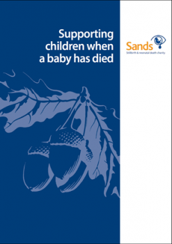 Supporting children when a baby has died
